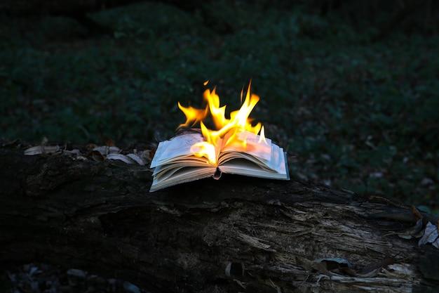 Płonąca książka w ogniu na zewnątrz. ludzie nie lubią czytać. problemy intelektualne.