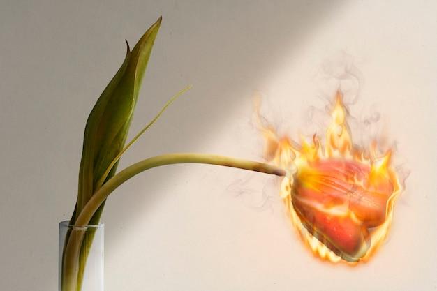 Płonący kwiat tulipana, estetyka ognia, remiks otoczenia z efektem ognia
