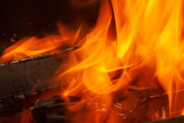 Płonący las otwarty ogień tło z miejsca na kopię. zamknąć widok. może być wykorzystany do twojej kreatywności.
