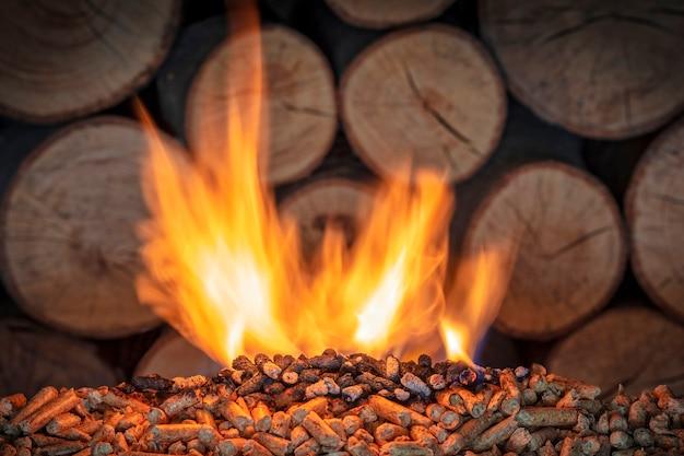 Płonący pellet drzewny
