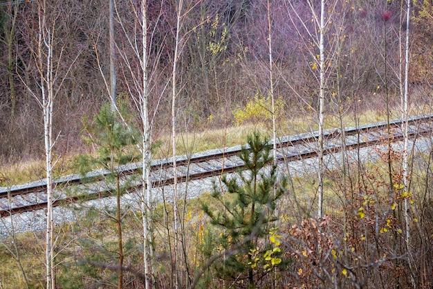 Płótno kolejowe w lesie przy drzewach późną jesienią