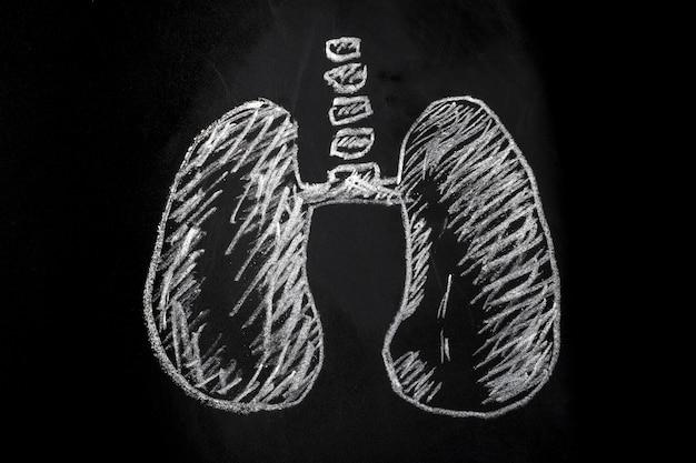 Płuca narysowane kredą na tablicy