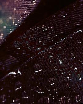 Płynące kropelki wody na powierzchni pióra