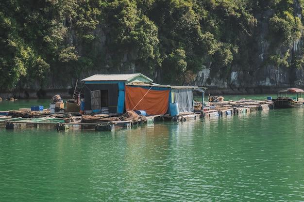 Pływająca wioska rybacka w zatoce ha long. wyspa cat ba, wietnam.