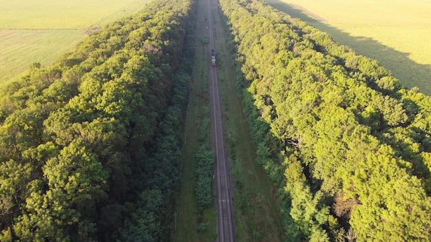 Pociąg jedzie po torach kolejowych przez las.