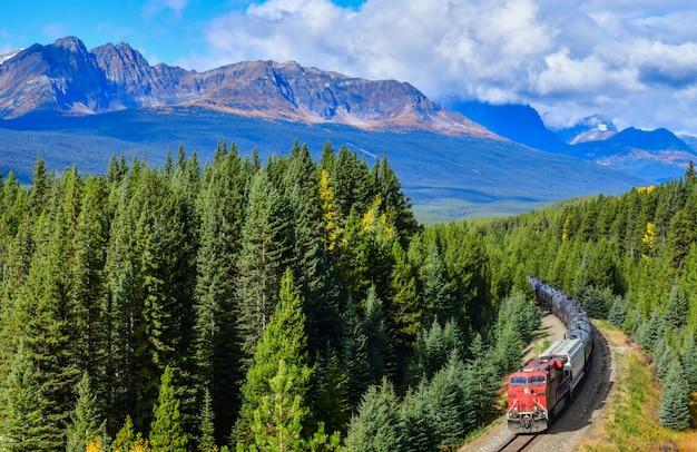 Pociąg przechodzi w bow valley jesienią, park narodowy banff, canadian rockies, kanada.