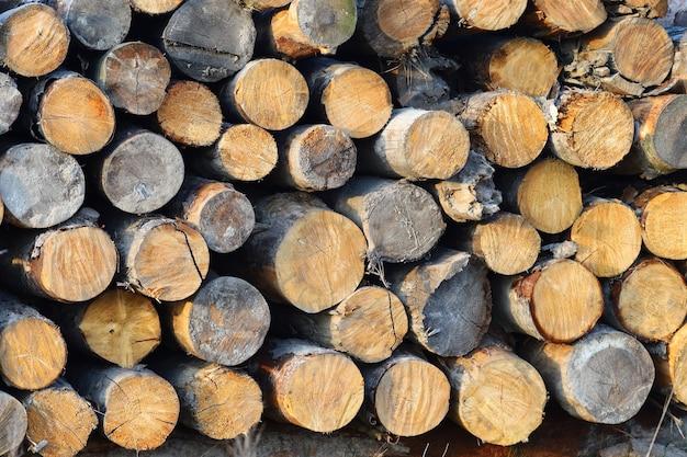 Pocięte drewno okrągłe z bliska