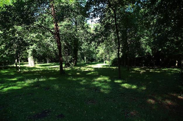 Poczdamski park i ogrody, berlin, niemcy