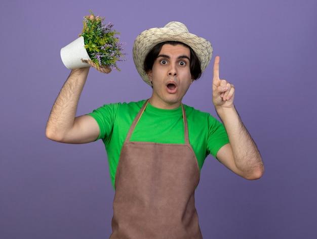 Pod wrażeniem młody męski ogrodnik w mundurze na sobie kapelusz ogrodniczy trzymający kwiat w punktach doniczkowych w górę na białym tle na fioletowo