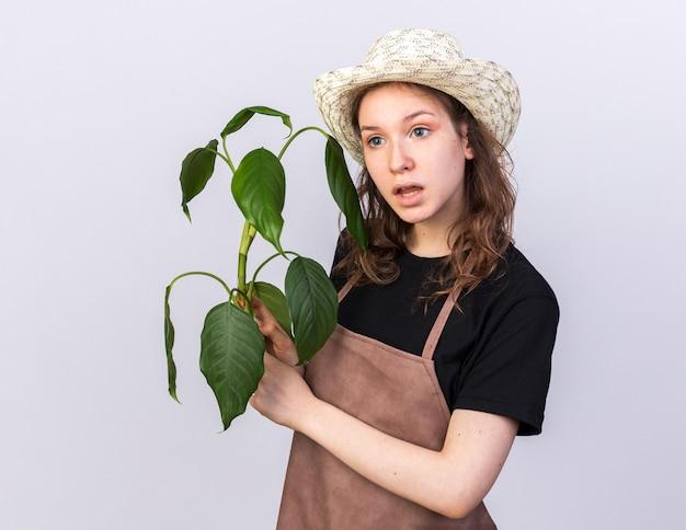 Pod wrażeniem patrzącego z boku młodego ogrodnika w kapeluszu ogrodniczym trzymającym plante na białej ścianie