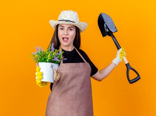 Pod wrażeniem piękna ogrodniczka w mundurze i kapeluszu ogrodniczym z rękawiczkami trzymająca łopatę i wyciągająca kwiat w doniczce na aparat odizolowany na pomarańczowym tle