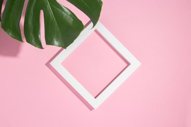 Podium prezentacji biały kwadrat ramki, liść monstera na różowym tle. widok z góry, układ płaski.