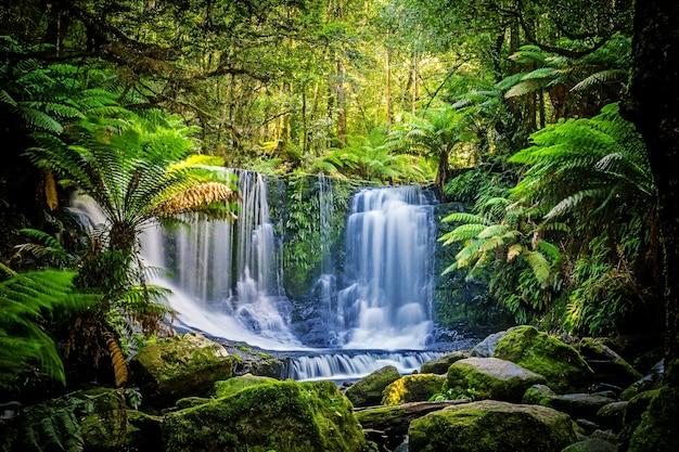 Podkowa spada przy mt śródpolnym parkiem narodowym, tasmania, australia