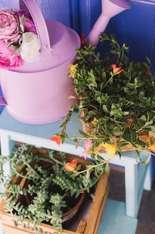 Podlewanie może obok kwiatów