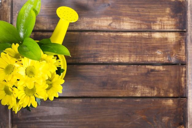 Podlewanie puli i żółte kwiaty
