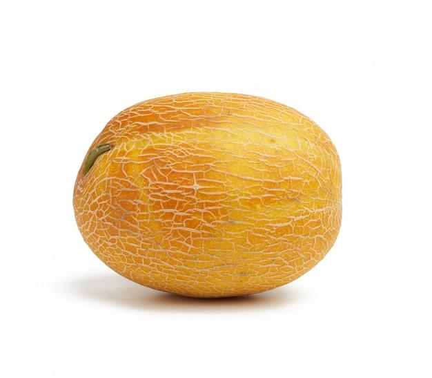 Podłużne okrągłe żółte dojrzałe melon na białym tle