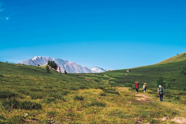 Podróżni z dużymi plecakami idą ścieżką w zielonej dolinie w góry
