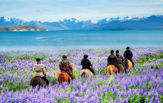 Podróżnik jedzie konia przy jeziornym tekapo, nowa zelandia.
