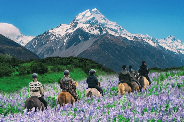 Podróżnik jedzie konia przy mt cook, nowa zelandia.