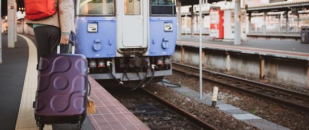 Podróżnik kobiety przewożenia walizka przy pociągu transportu miejscem przeznaczenia.