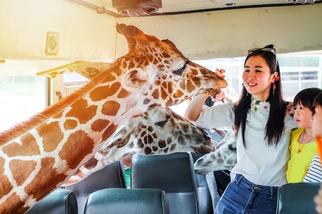 Podróżnik rodzinny żywienie karmą dla żyrafy.
