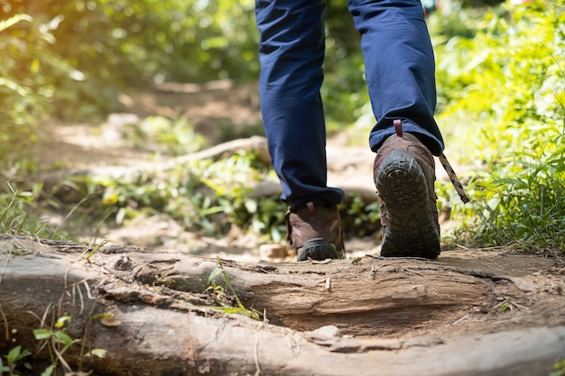Podróżnik w butach turystycznych trekking na ścieżce w lesie z bliska