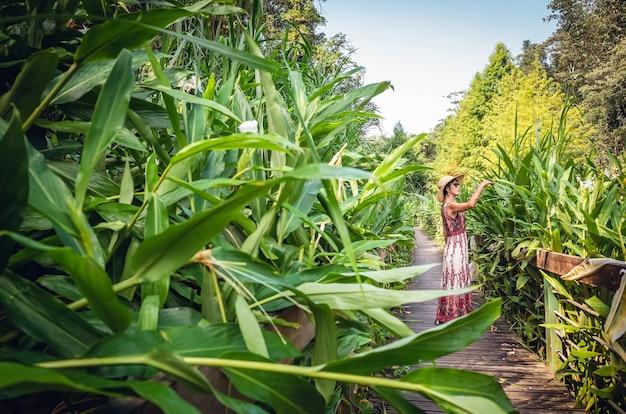 Podróżująca azjatka spaceruje pasem w lesie
