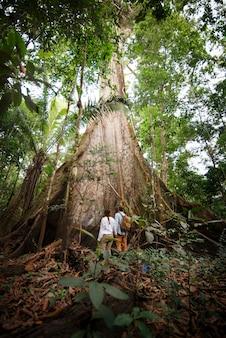 Podróżujący odkrywcy obserwujący drzewa amazonii