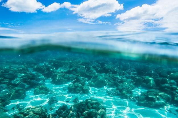 Podwodna i wodna powierzchnia z niebem