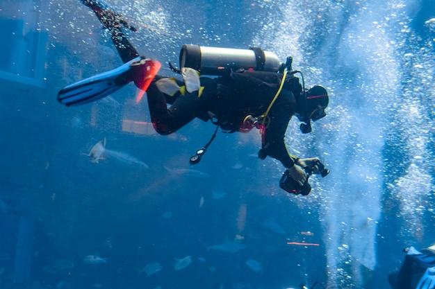 Podwodni fotografowie nurkujący w ogromnym akwarium. nurkowie z aparatem otoczeni dużą ilością ryb. sanya, hajnan, chiny.
