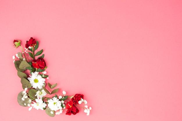 Podwyższony widok kwiaty i liść dekorujący na brzoskwini tle