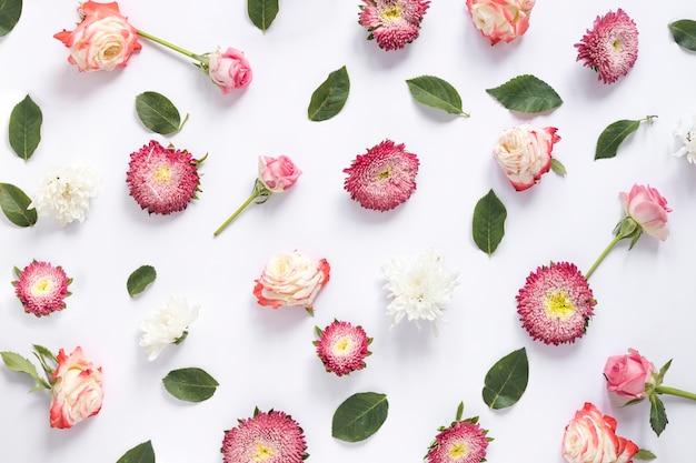 Podwyższony widok różnorodni kwiaty i zieleń liście na biel powierzchni