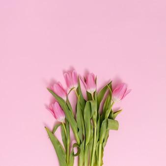 Podwyższony widok tulipanowi kwiaty na dnie różowy tło