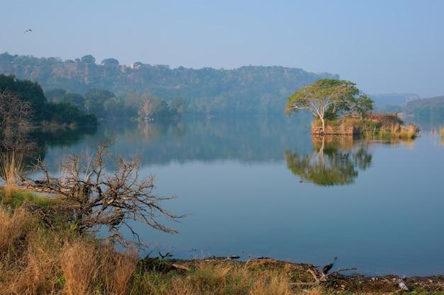 Pogodny Poranek Nad Jeziorem Padma Talao Ranthambore Park Narodowy Radżastan Indie Premium Zdjęcia