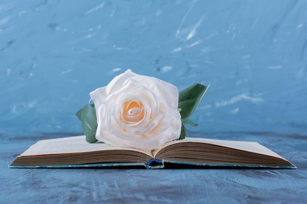 Pojedyncza biała róża umieszczona na górze otwartej księgi na niebiesko.