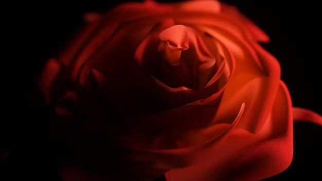 Pojedyncza czerwona róża bliska