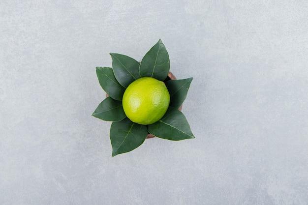 Pojedyncza limonka z liśćmi w drewnianej misce.