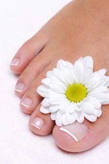 Pojedyncza piękna kobieca stopa z kwiatem rumianku