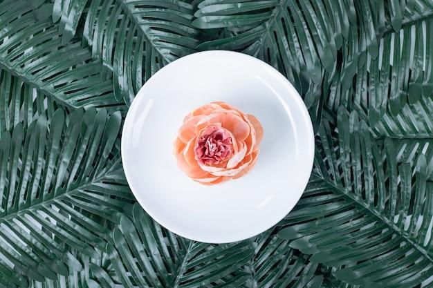 Pojedyncza róża na białym talerzu ze sztucznymi liśćmi.