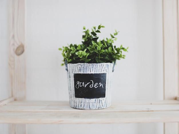 Pojedyncza zielona roślina w doniczce z napisem ogródek