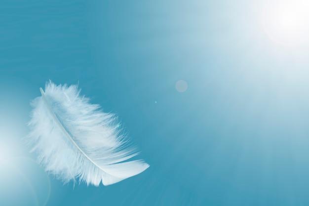 Pojedyncze białe piórko unosi się na niebie.