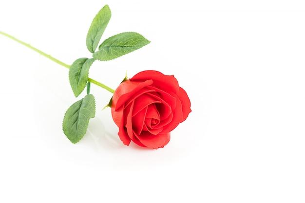 Pojedyncze czerwone plastikowe fałszywe róże na białym tle