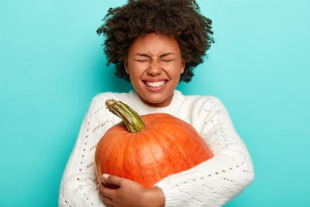 Pojedyncze ujęcie nadmiernie wzruszającej radosnej kobiety z kręconymi włosami afro, odbiera dużą dyni, nosi ciepły sweter, odizolowane na niebiesko.