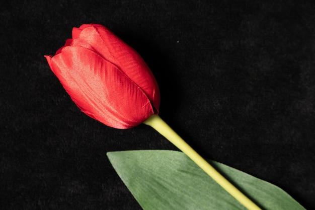 Pojedynczy czerwony tulipan na czarnym tle, sztuczna roślina,