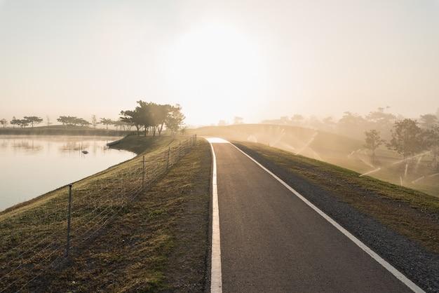 Pojedynczy drzewo przy mgłową drogą w ranku