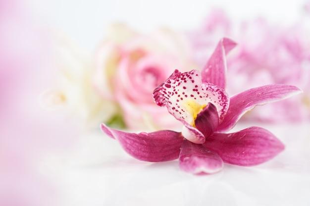 Pojedynczy storczykowy kwiat na kwiecistym tle