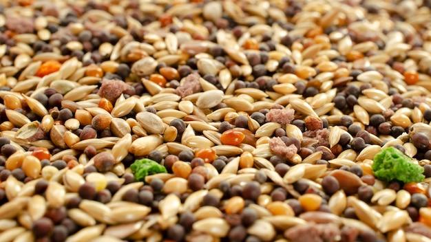 Pokarm dla kanarków papugi zięby tekstura tło widok z góry mieszane nasiona do karmienia ptaków