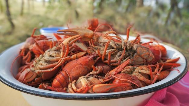 Pokarm dla ogoniastych raków gotowanych od mieszkańców rzek pokarm ze skorupiaków gotowanych raków