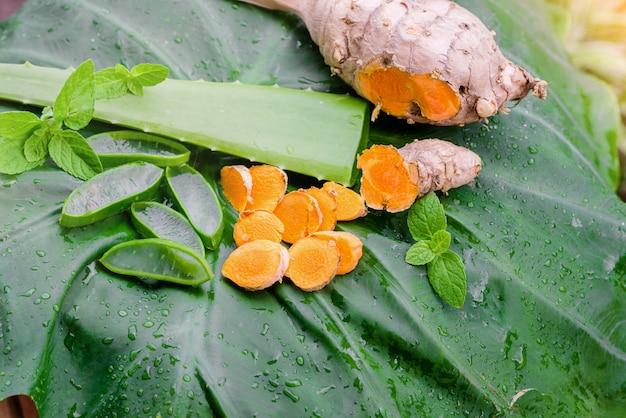 Pokrój aloe vera i liście mięty i kurkumę