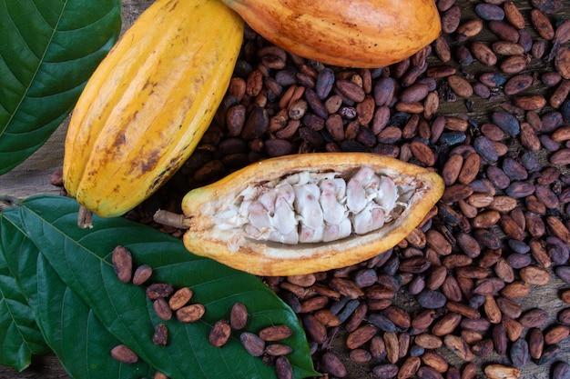 Pokrój owoce kakaowe i surowe ziarna kakaowe.